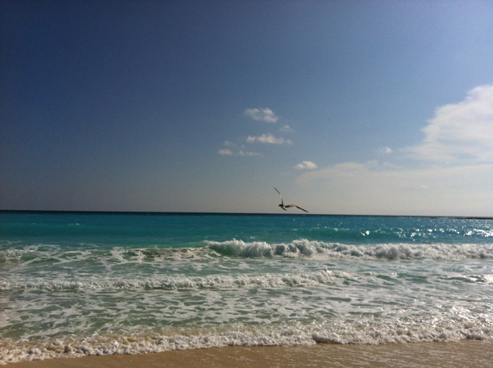 plage-mouette-cancun-club-med